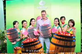 Somersby Launch 04